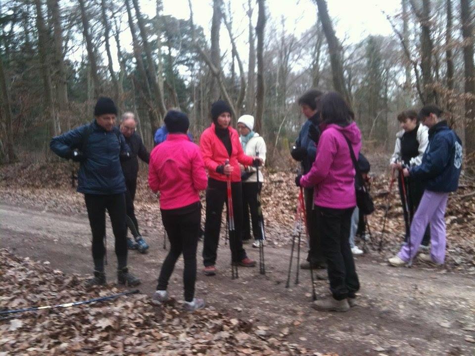 Sortie club en forêt Montargoise avec la présidente